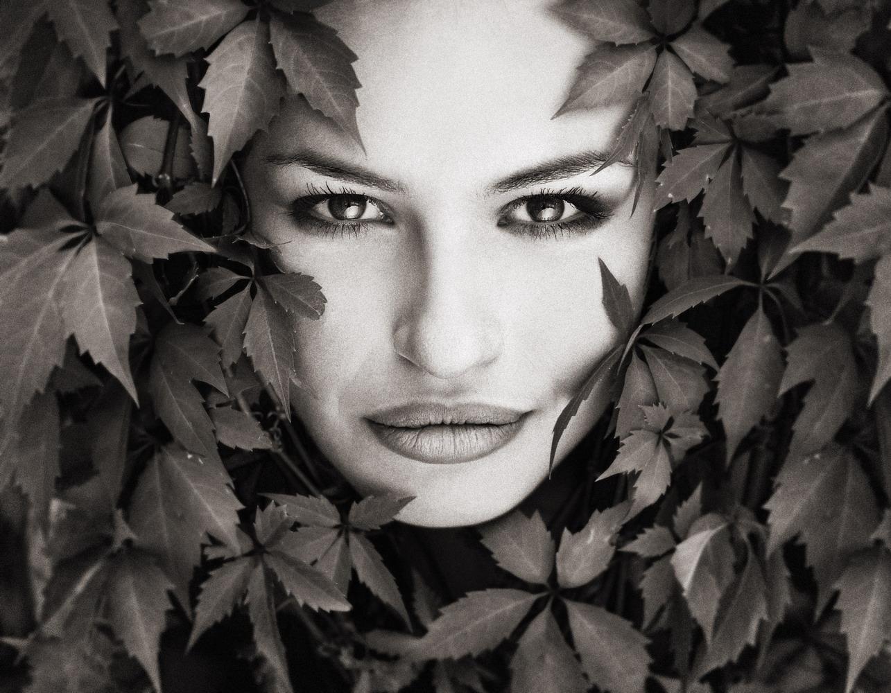 122_leaves